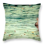 Quietude Throw Pillow