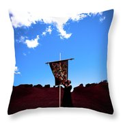Quilted Sky  Throw Pillow