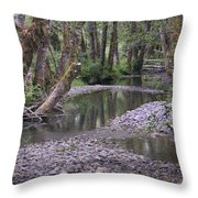 Quinault Rain Forest 3147 Throw Pillow