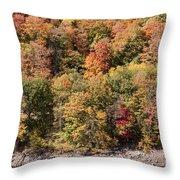 Quinnipiac River Color Throw Pillow