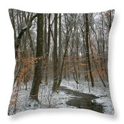 Quite Path Throw Pillow