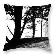Quite Time Of Day 2 Throw Pillow
