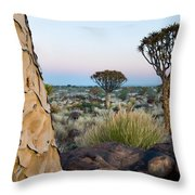 Quiver Tree Aloe Dichotoma, Quiver Tree Throw Pillow