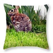Rabbit As A Painting Throw Pillow