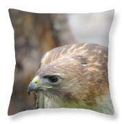 Rabbit Hunting Throw Pillow