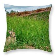 Rabbit In The Grass Throw Pillow