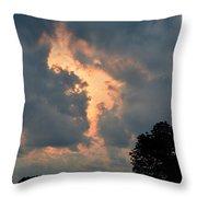 Rabbit In The Sky Throw Pillow
