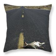 Rabbit Road Kill Throw Pillow