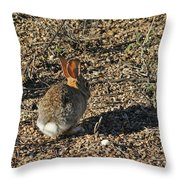 Rabbit. Throw Pillow