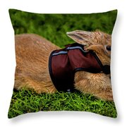 Rabbit With Vest Throw Pillow