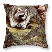Raccoon Found Treasure  Throw Pillow
