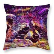 Raccoon Wild Animal Furry Mammal  Throw Pillow
