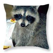Raccoon1 Snack Bandit Throw Pillow