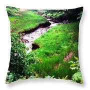 Rachel Carson National Wildlife Refuge Throw Pillow by Thomas R Fletcher