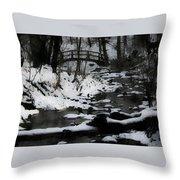 Rachel Carson Trail  Throw Pillow