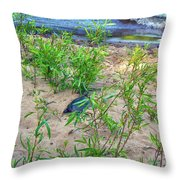 Racing To The Edge Throw Pillow