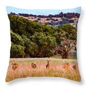 Nine Racing Whitetail Deer Throw Pillow