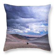 Racing With The Storm Throw Pillow