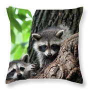 Racoons In Tree Throw Pillow