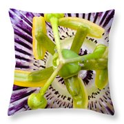 Radial Arms  Throw Pillow