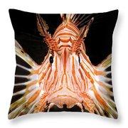 radial Lionfish Pterois radiata Throw Pillow