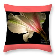 Radiance Of Hope Throw Pillow