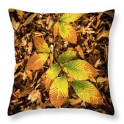 Radiant Beech Leaf Branches Throw Pillow