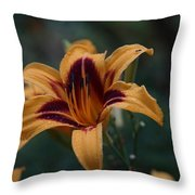 Radiant Lily Throw Pillow