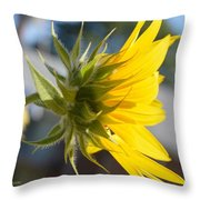 Radiant Moment Throw Pillow