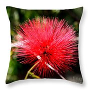 Radiant Red Throw Pillow