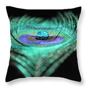 Radiant Reflection Throw Pillow