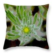 Radiate Your Inner Glow Throw Pillow