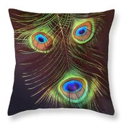 Raffiki Peacock Throw Pillow