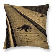 Railroad Bandit Throw Pillow