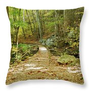 Railroad To Nowhere Throw Pillow