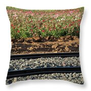 Rails And Roses Throw Pillow
