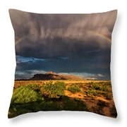 Rain And Rainbows  Throw Pillow