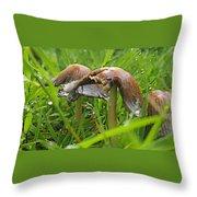 Rain Bombarding Mushroom Settlement. Throw Pillow