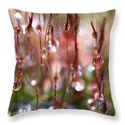 Rain Catcher Throw Pillow