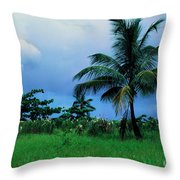 Rain Cloudsover Dominica Throw Pillow by Thomas R Fletcher