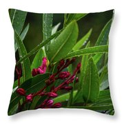 Rain Coated Blades Of Grass And  Deep Pink Petals Throw Pillow