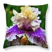 Rain Coated Multi Colored Iris Throw Pillow