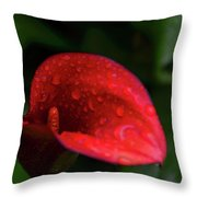 Rain Coated Red Anthurium Throw Pillow
