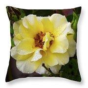 Rain Coated Yellow Rose Throw Pillow