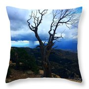 Rain Column Tree Throw Pillow