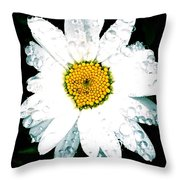 Rain Daisy  Throw Pillow