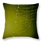 Rain Down On Me Throw Pillow