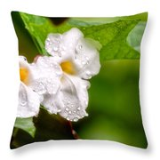 Rain Drenched Pair Throw Pillow