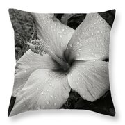 Rain-drenched Throw Pillow