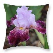 Rain Drop Iris Throw Pillow